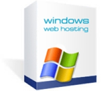 Windows Hosting Plan W25100